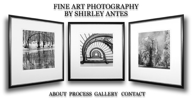 Shirley Antes black and white photography : fine art photographs.